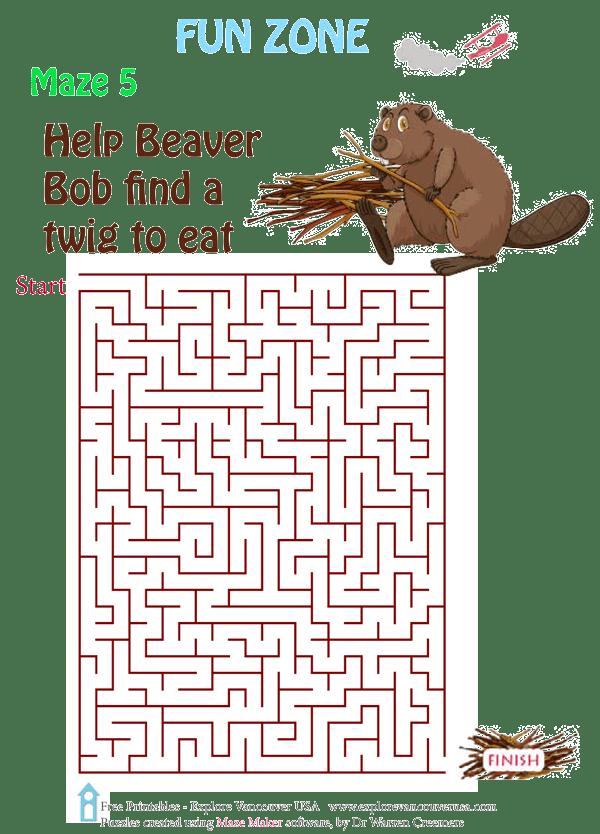 Beaver Bob Maze 5